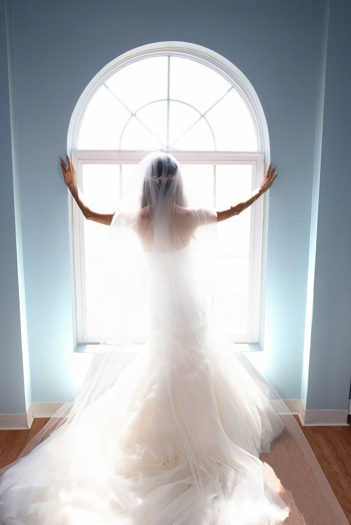 AlexandraRyan-Silhouette-color-3m.jpg